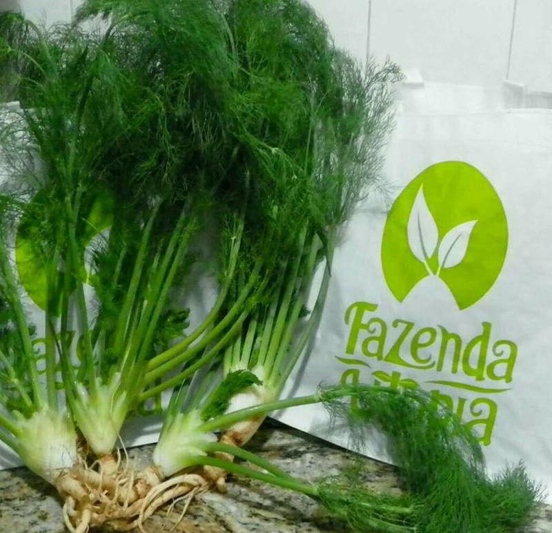 FazendaUtopia77